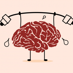 The Ins and Outs Of An Introduction To Psychology Course